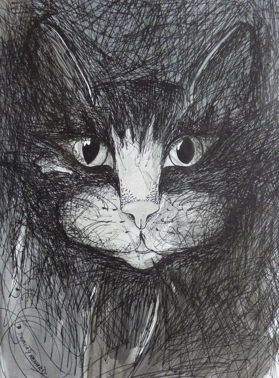 """<span style=""""color: #ff0000;""""><a style=""""color: #ff0000;"""" href=""""mailto:bdumontrenard@yahoo.com?subject=Défi 15 dessins 15 semaines -  La nuit tous les chats sont réveillés""""> Contacter l'artiste</a></span> B. Dumont Renard -   La nuit tous les chats sont réveillés - 80€  (transaction directement avec l'artiste) - encre et graphite sur papier,  32x24 cm"""